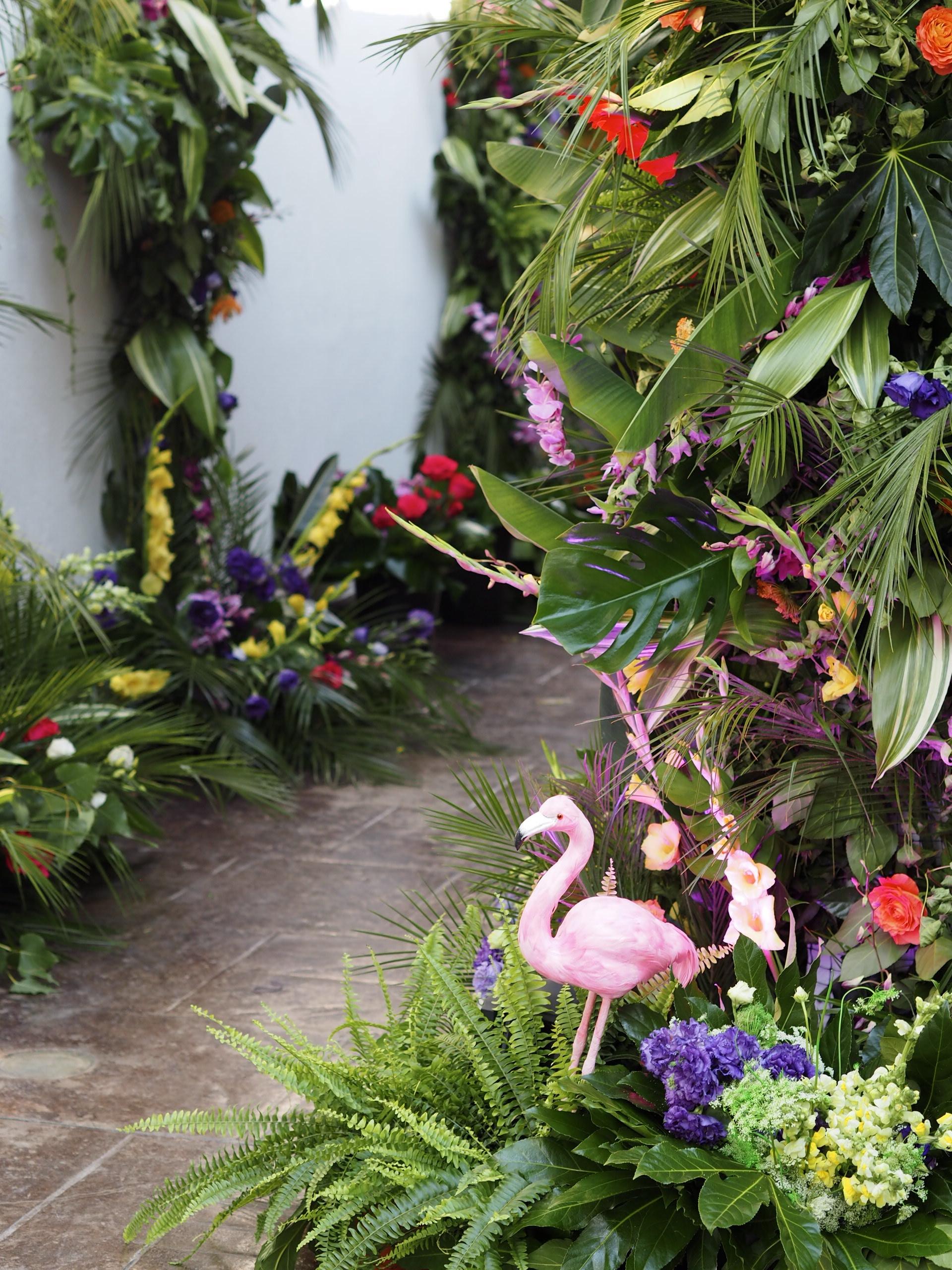 Nunta tropicala Bucuresti